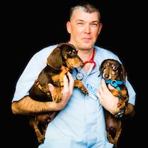Dr-Marinkov-2 chiens