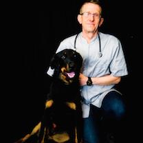 Dr giry-chien noir